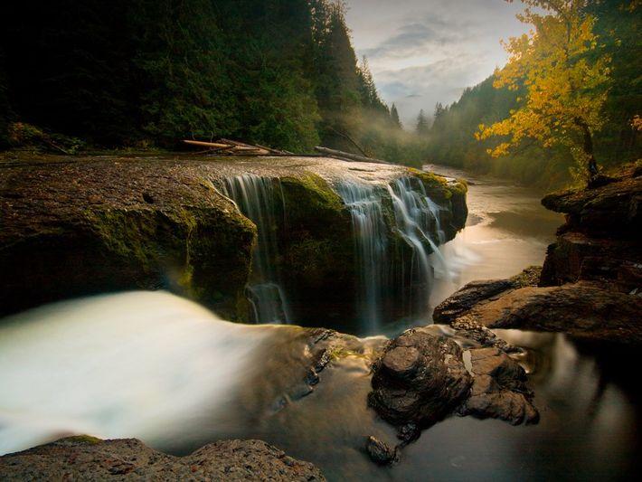 Le soleil se couche au-dessus des cascades de la rivière inférieure Lewis, situées dans la forêt ...