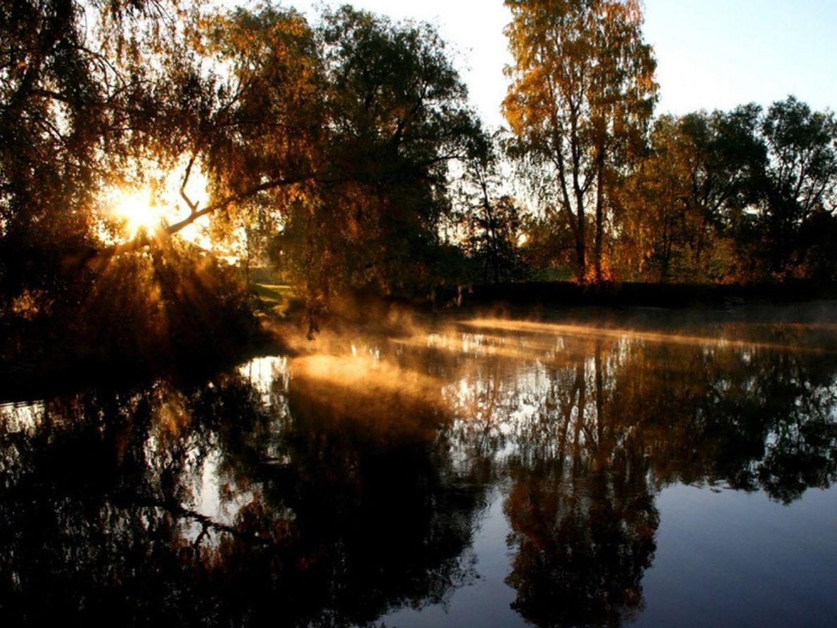 Tous les écosystèmes de rivières ne sont pas aussi bucoliques que celui-ci, mis en valeur par ...