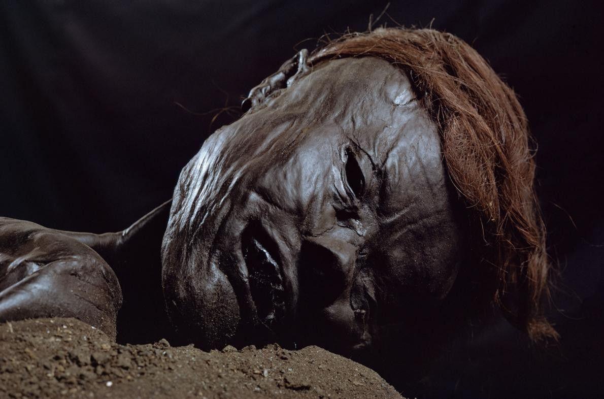 L'Homme de Grauballe est une momie des tourbières, découverte en 1952 dans le Jutland, dans la ...