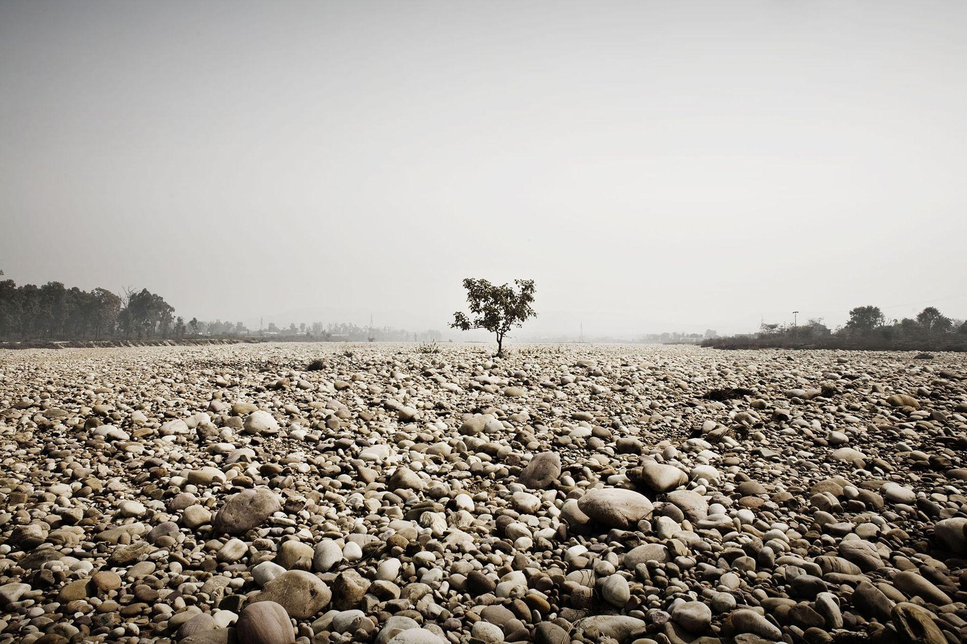 L'un des affluents du Ganges près de Haridwar devient aride pendant la saison chaude.