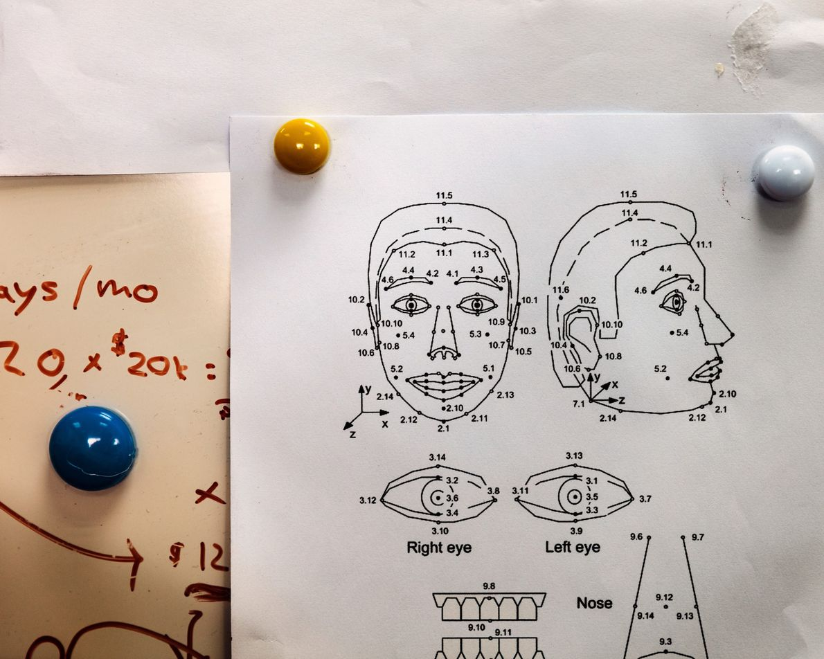 Des schémas comme ceux-ci aident les ingénieurs à concevoir l'éventail de plus de 60 expressions faciales ...