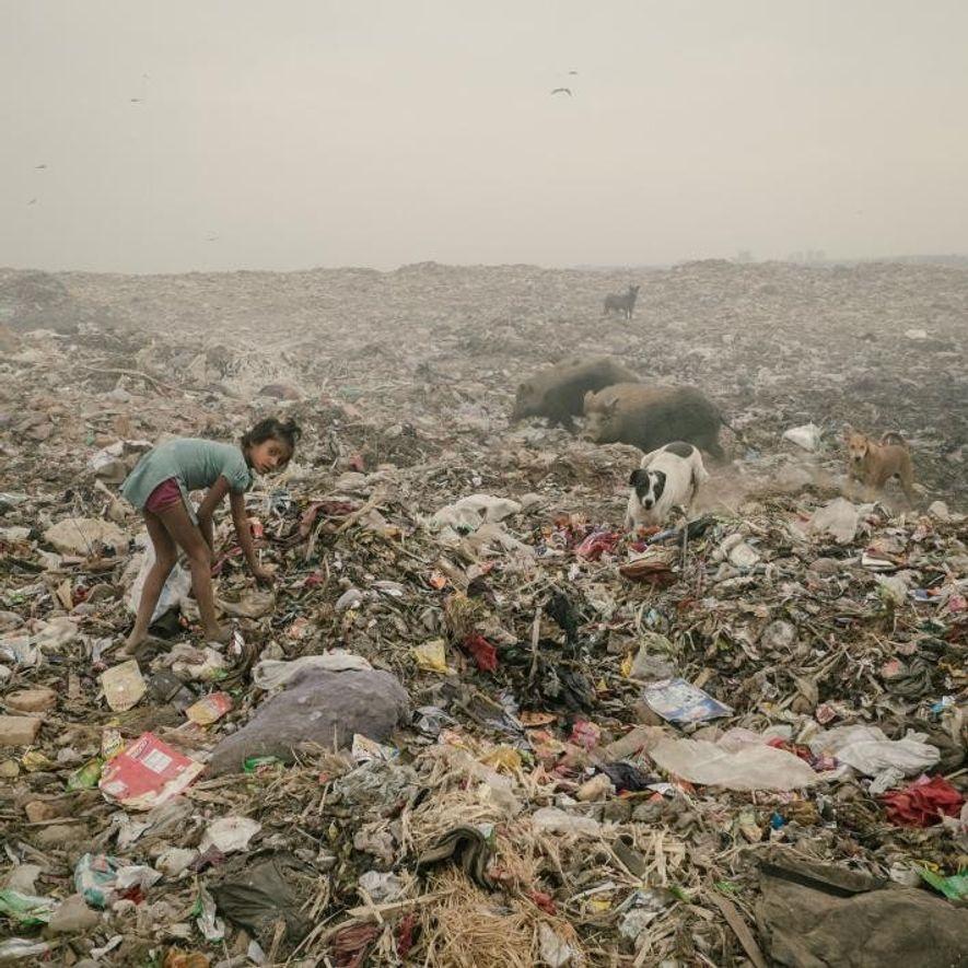 Dans une décharge à Bhalswa, Delhi, qui semble s'étendre sur plusieurs kilomètres, une jeune fille est à la recherche de plastique.