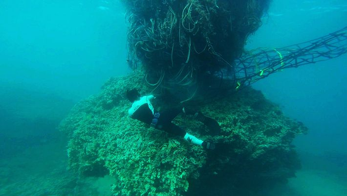 Le filet de 11 tones qui menaçait les côtes hawaïennes