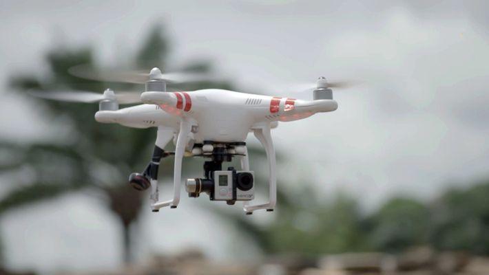 Barons du commerce de l'ivoire trahis par les survols de drone