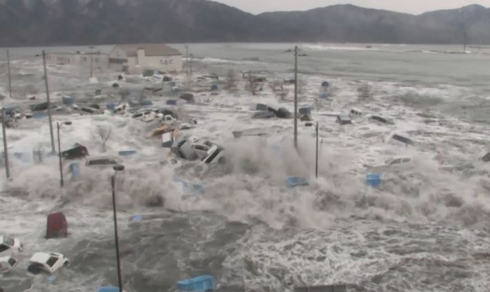 Tsunamis 101