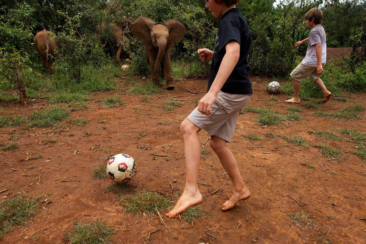 En 2010 dans le Parc national de Nairobi au Kenya, deux garçons jouent au football avec ...