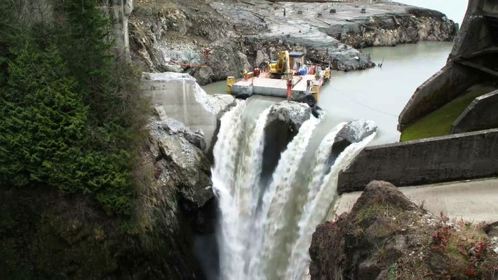 La renaissance d'une rivière après le plus grand démantèlement de barrage des États-Unis