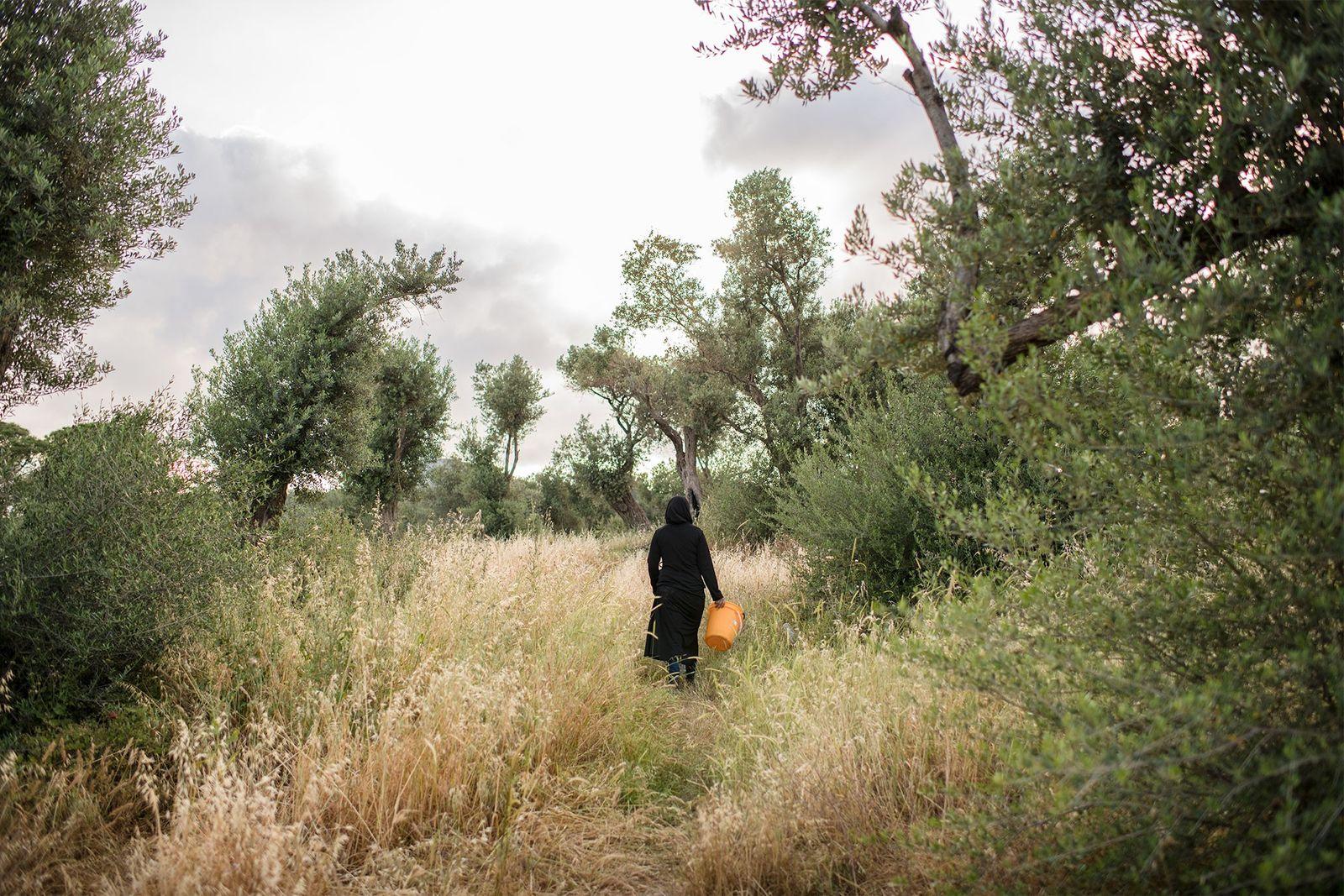 Une femme s'éloigne du camp de l'Oliveraie un seau à la main, vraisemblablement pour ramasser du ...