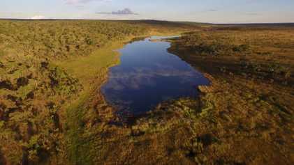 Plongée inédite dans le delta de l'Okavango