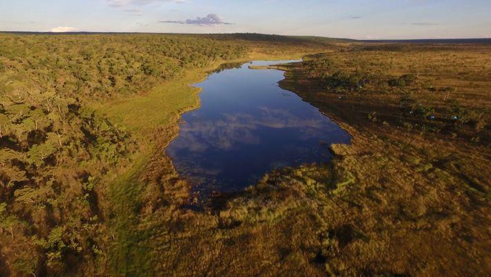 Les lacs africains inexplorés révèlent un monde foisonnant de vie