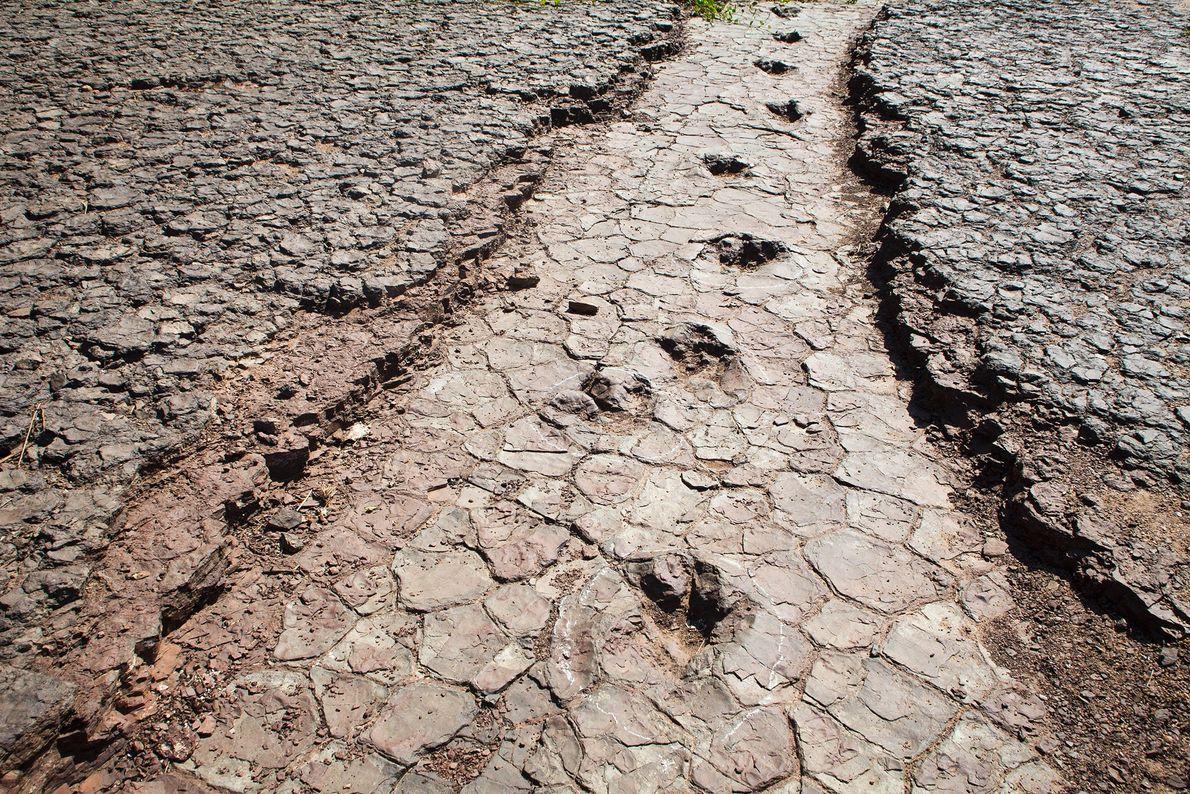 Une série d'empreintes de dinosaures traverse la Valley of the Dinosaurs de Sousa dans le nord-est ...