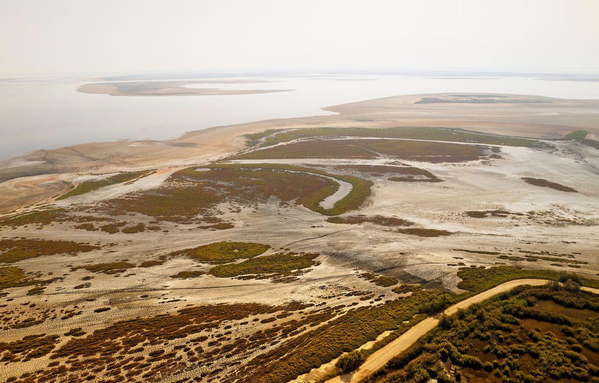 L'étang des Impériaux, au nord de Saintes-Maries-de-la-Mer fait partie du système de l'étang de Vaccarès mais ...