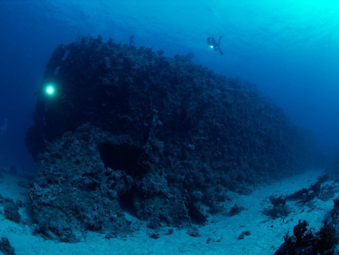 Les récifs de la mer Rouge sont aussi dangereux que foisonnants de vie. Ici, les plongeurs ...