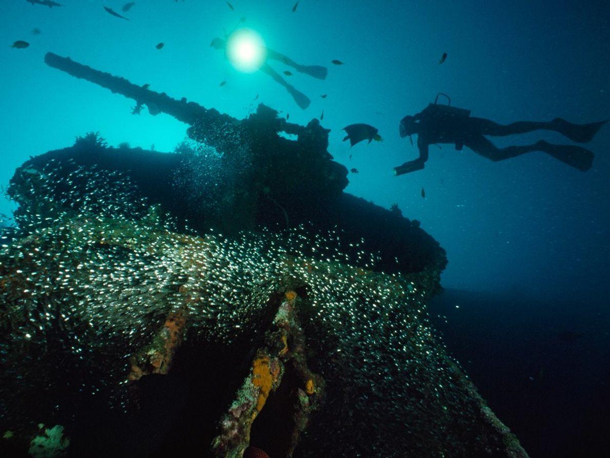Les plongeurs nagent près du U.S.S. President Coolidge près de l'île Espiritu Santo de Vanuatu. Le ...