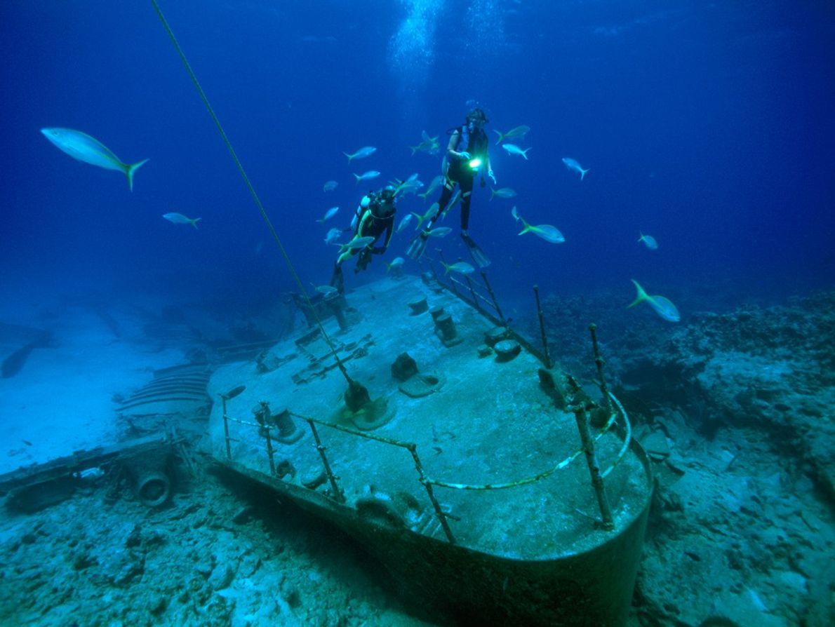 Des plongeurs et des poissons planent au-dessus des restes d'un navire dont la coque s'est fracassée ...