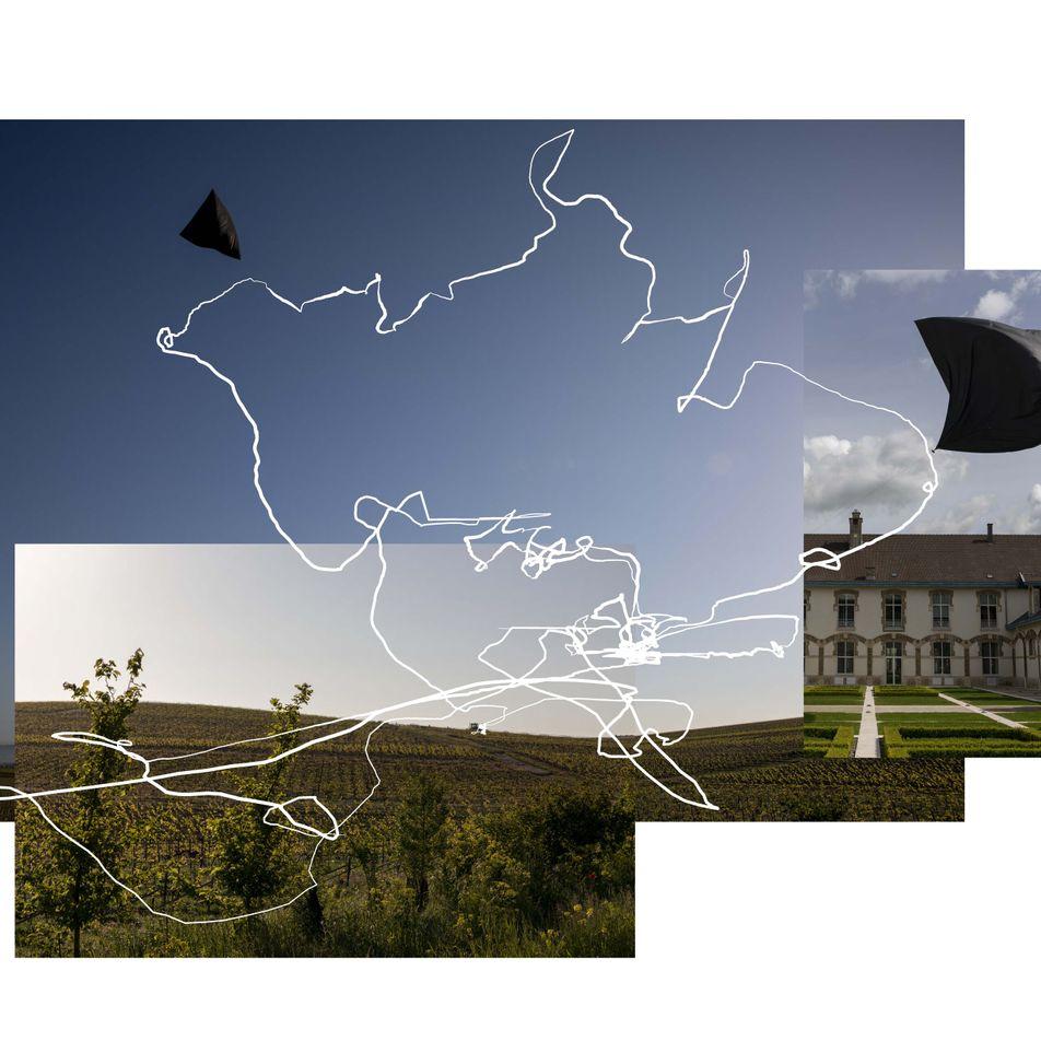La Maison Ruinart choisit une approche artistique pour sensibiliser sur l'urgence climatique