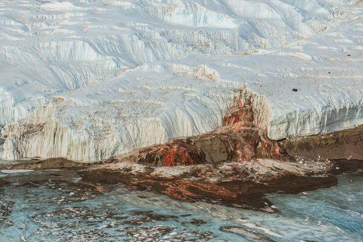 La véritable cause de la couleur sanglante des Blood Falls en Antarctique est restée un mystère ...