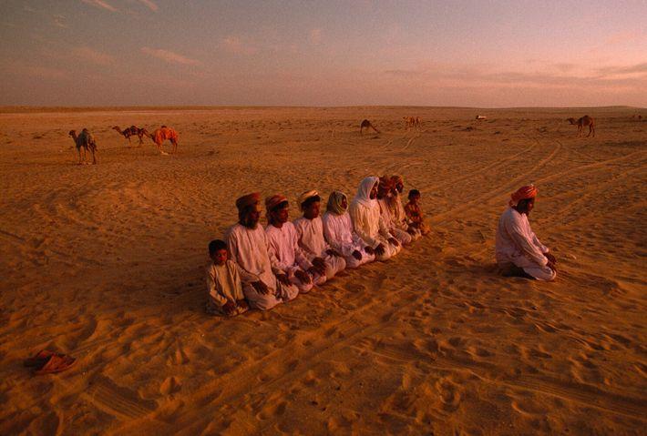 Oman, 1992 : des Bédouins de Hamad Haraiz Harsousi font leur prière du soir dans le désert ...