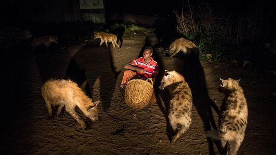 Dans le village d'Harar, en Éthiopie, Abbas nourrit des hyènes devant sa maison.