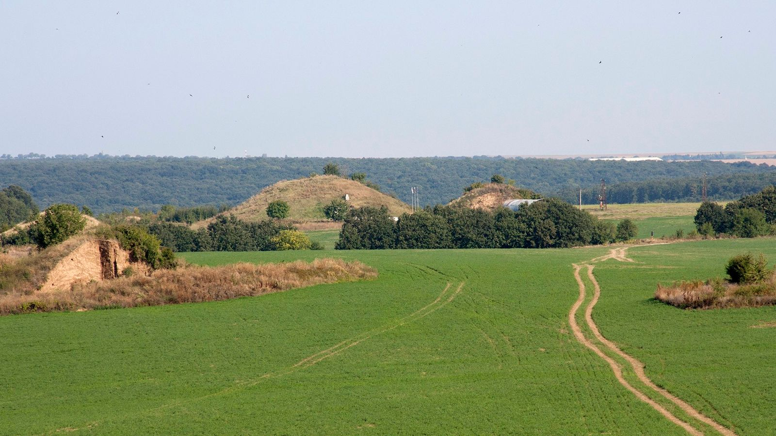 Les nécropoles de Sboryanovo présentent une centaine de tumulus, dont certains dépassent les 10 m de ...