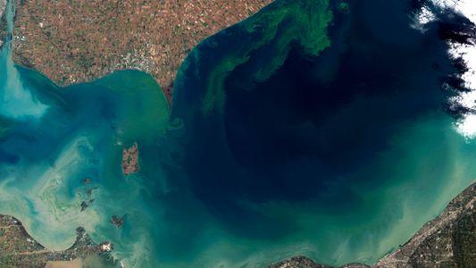 Le changement climatique asphyxie les lacs