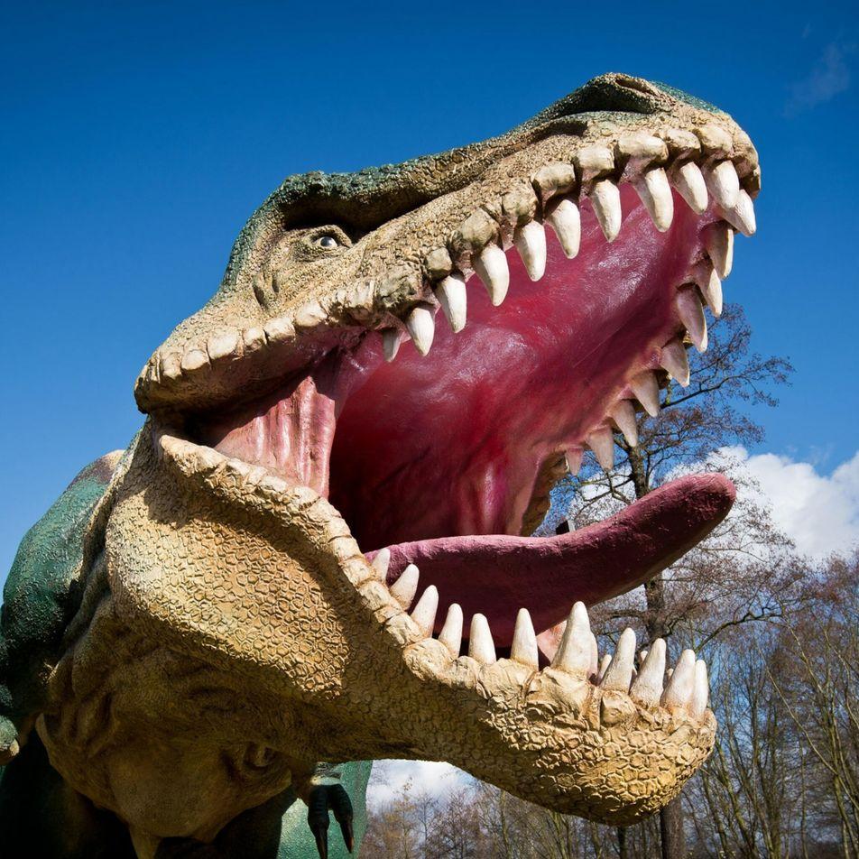 Les T. rex n'étaient pas seulement carnivores, ils étaient aussi cannibales