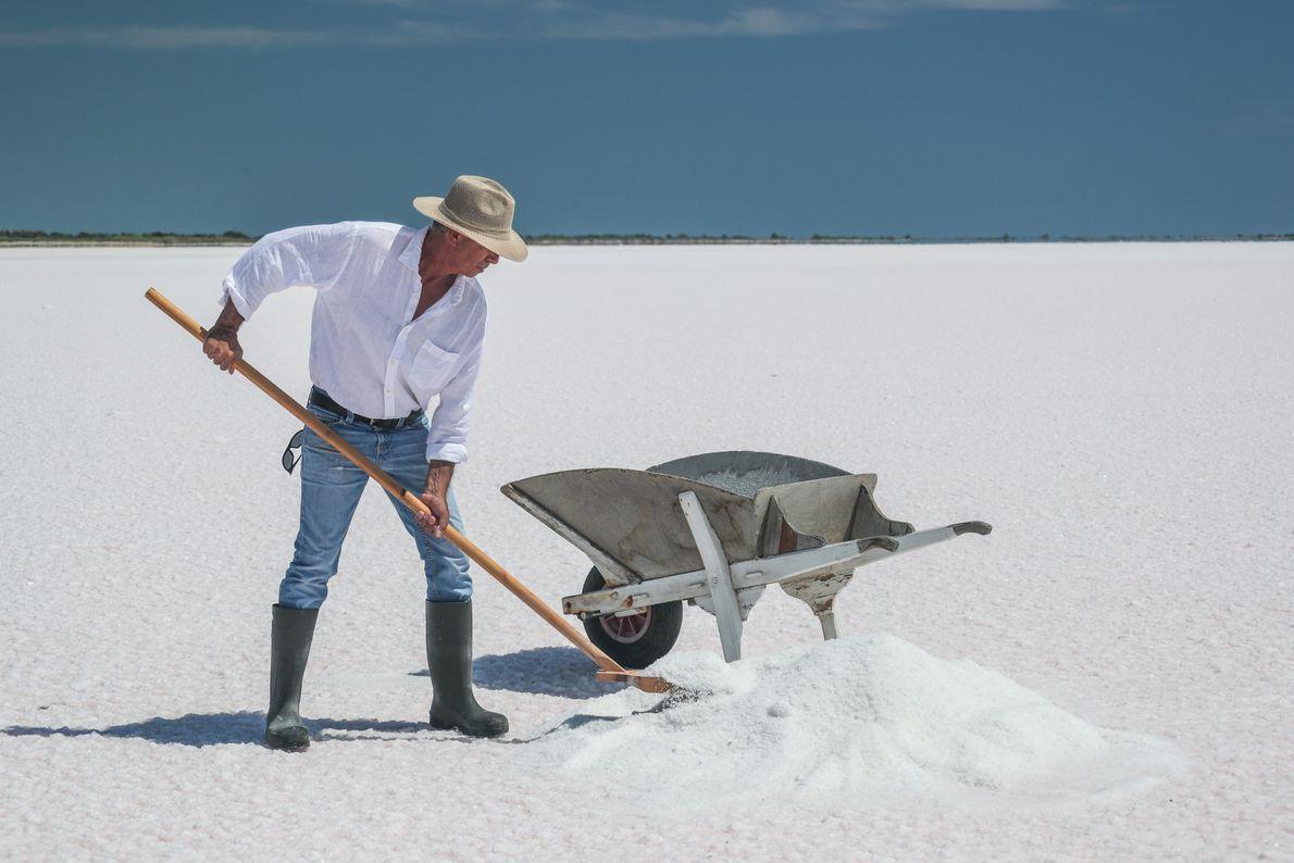 Depuis l'Antiquité, l'érosion du front de mer a obligé les sauniers à déplacer les bassins de ...
