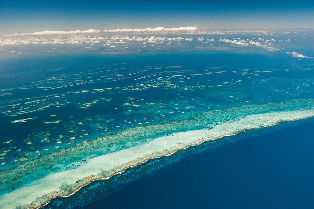 Vue aérienne du récif