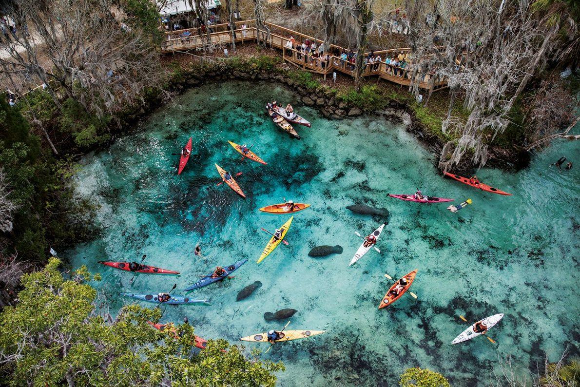 Abondance de kayaks
