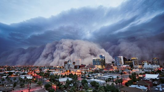 Tornades, ouragans, inondations, feux… quand la nature s'emballe