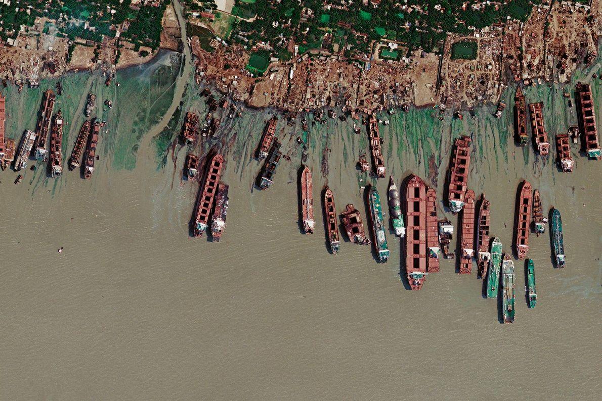 Le cimetière des géants des mers