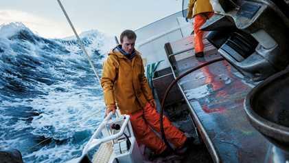 Avec les derniers chasseurs de baleines norvégiens