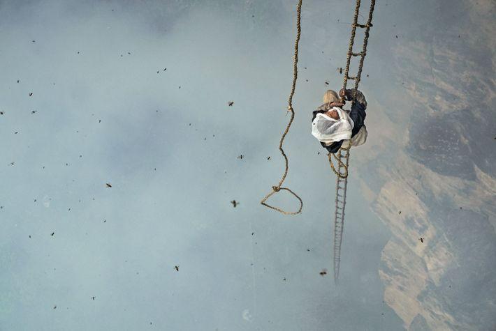 Mauli Dhan grimpe à 30 mètres au-dessus du sol sur une échelle faite en corde de ...