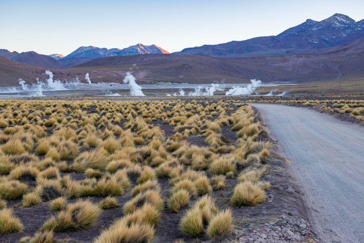 Le matin est le moment idéal pour observer les geysers d'El Tatio à Atacama. À plus ...