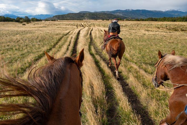 Un gaucho guide les visiteurs lors d'une promenade à cheval dans les prairies vallonnées, ou dans ...