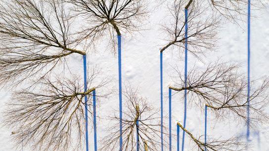 Caleb Kenna est un photographe originaire du Vermont, aux États-Unis, qui aime balader son drone à ...