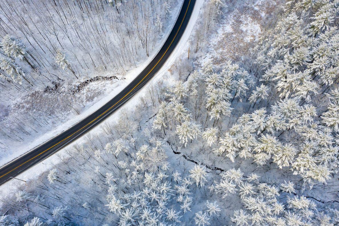Le photographe drone Caleb Kenna a immortalisé cette matinée d'hiver par-dessus la forêt de Means Woods ...