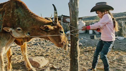 Au rythme des vaqueros mexicains