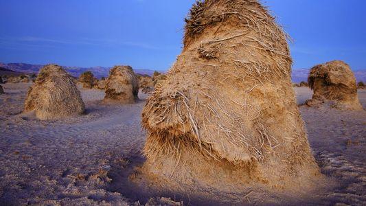 Les paysages époustouflants de la vallée de la Mort