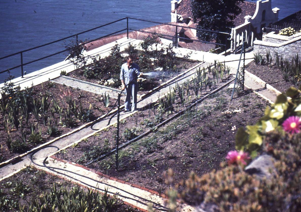 Ces photos prises dans les années 1950 montrent les jardins d'Alcatraz tels qu'ils étaient à l'apogée ...