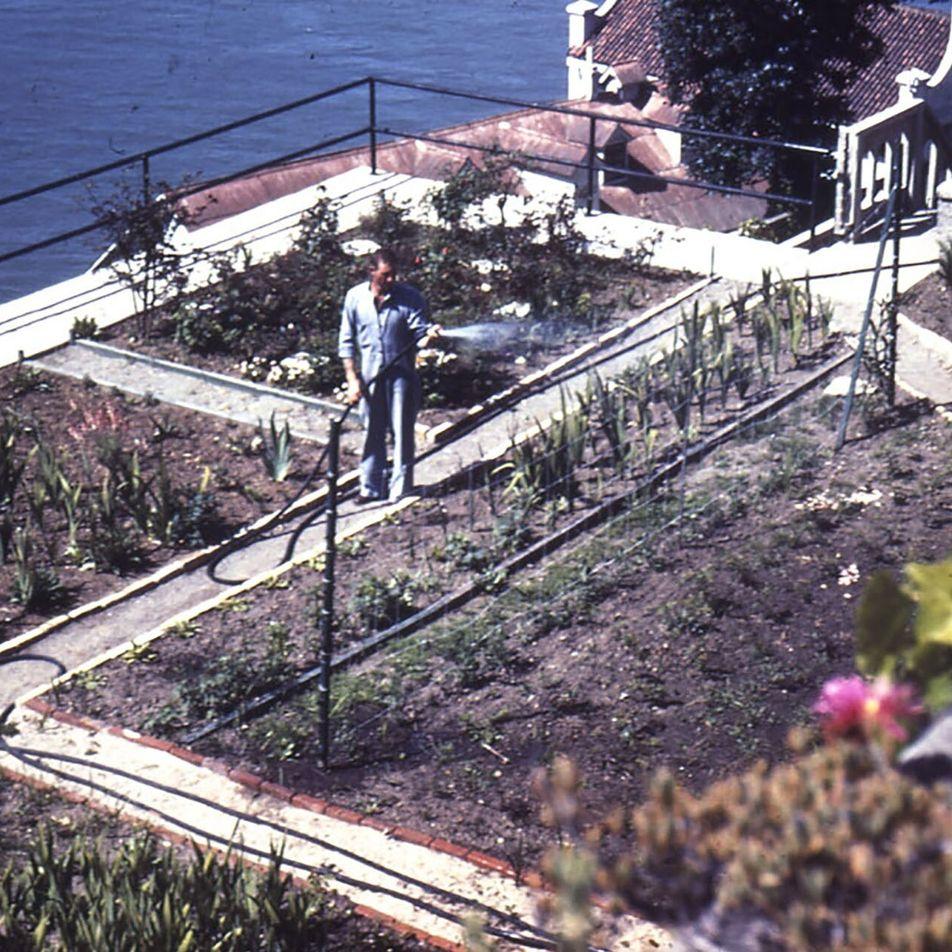 Alcatraz, l'île aux multiples facettes