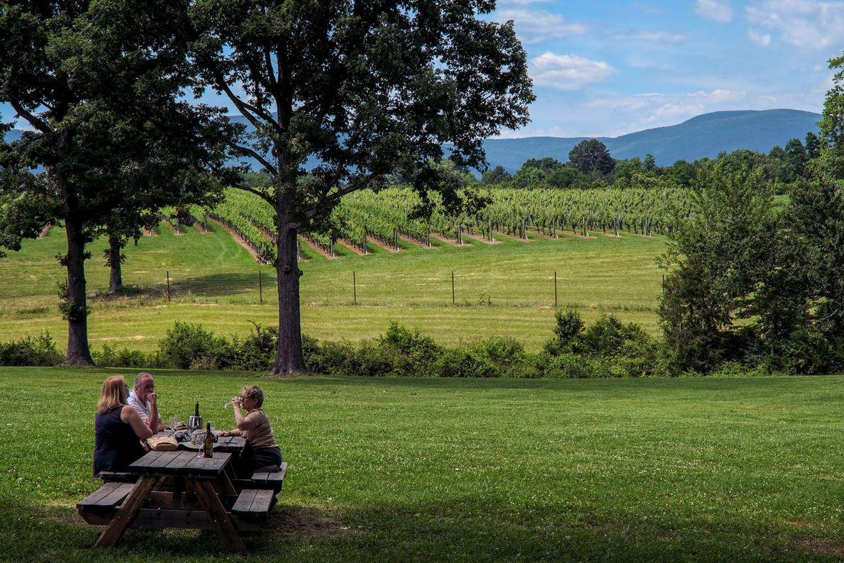 """Les vignobles couvrent les collines en bordure de Charlottesville. """"La campagne viticole et hippique de Virginie ..."""