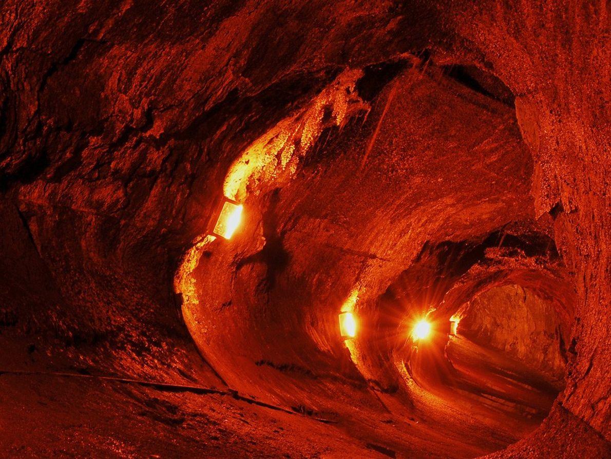 Les lumières illuminent le tube de lave de Thurston dans le parc national des volcans d'Hawaï. ...