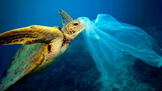 La concentration de microplastique dans l'océan Arctique atteint un nouveau record