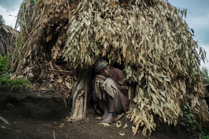 Lorsque les communautés indigènes pygmées ont été chassées des parcs nationaux du Congo, peu ont reçu ...