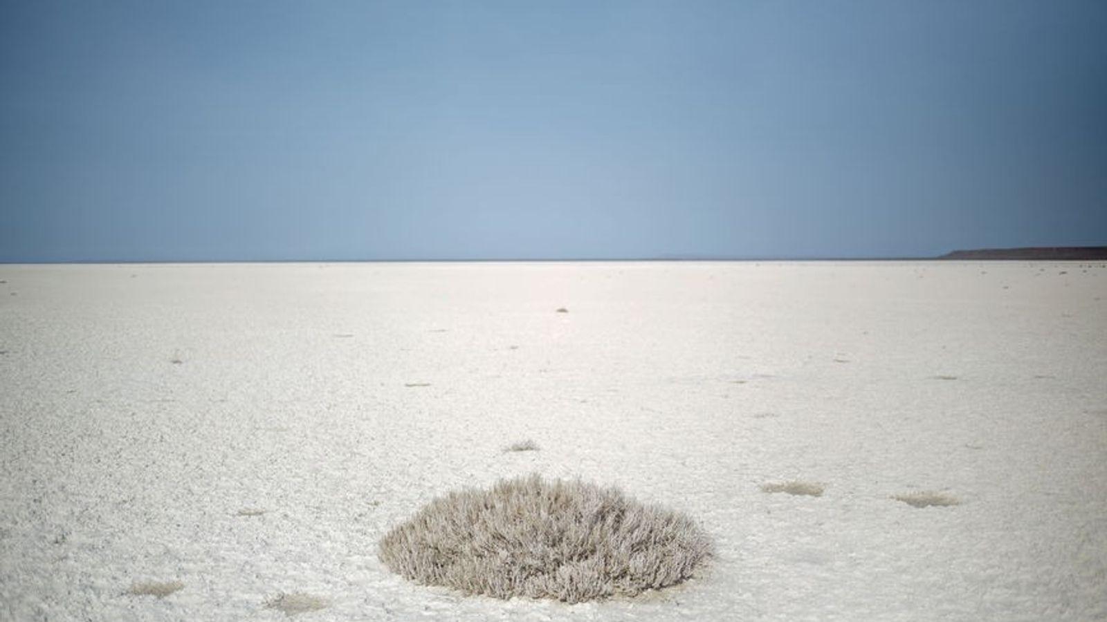 Pendant des millénaire, la Mer d'Aral était l'un des plus grands plans d'eau de la planète. ...