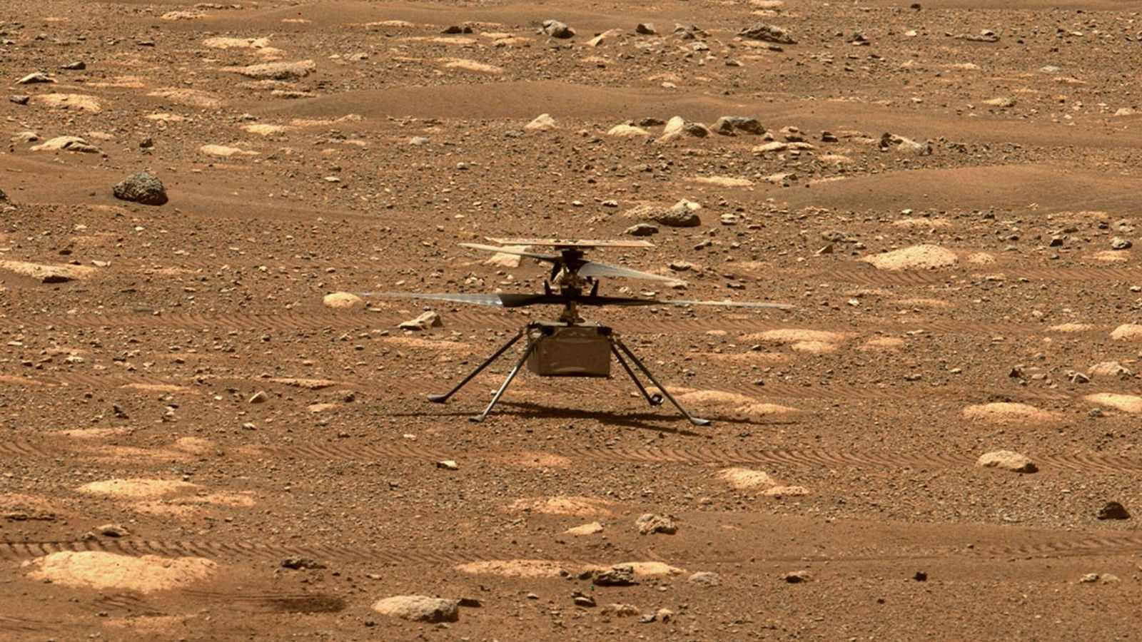 Mars Ingenuity Grounded for Now