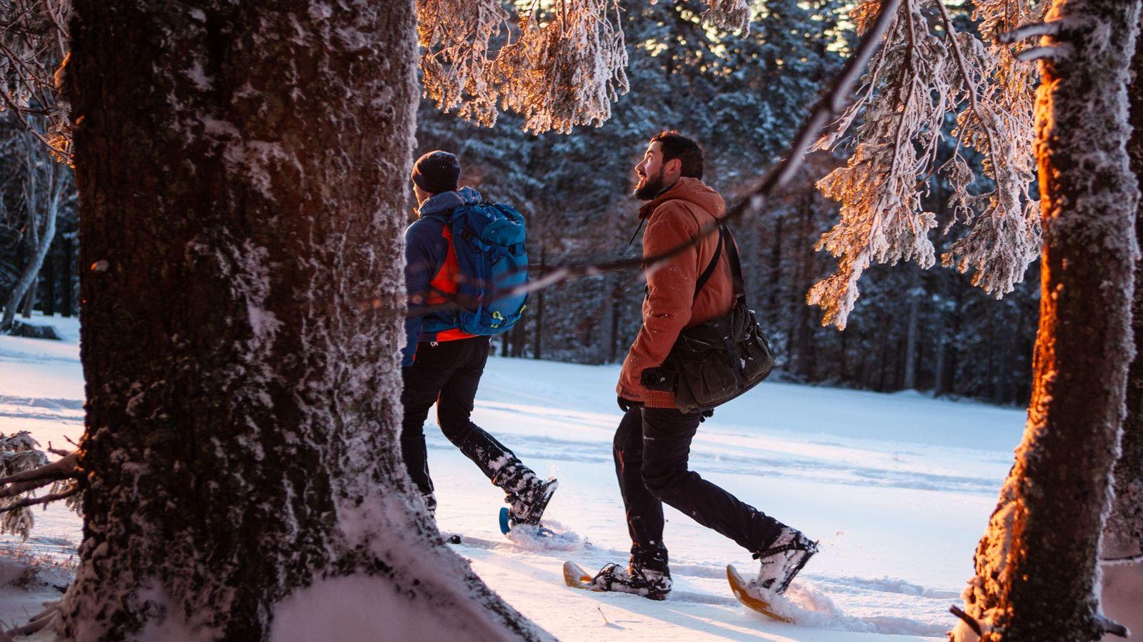 Nejc Heberle, guide de raquettes à neige, ouvre la marche dans une des forêts slovènes.