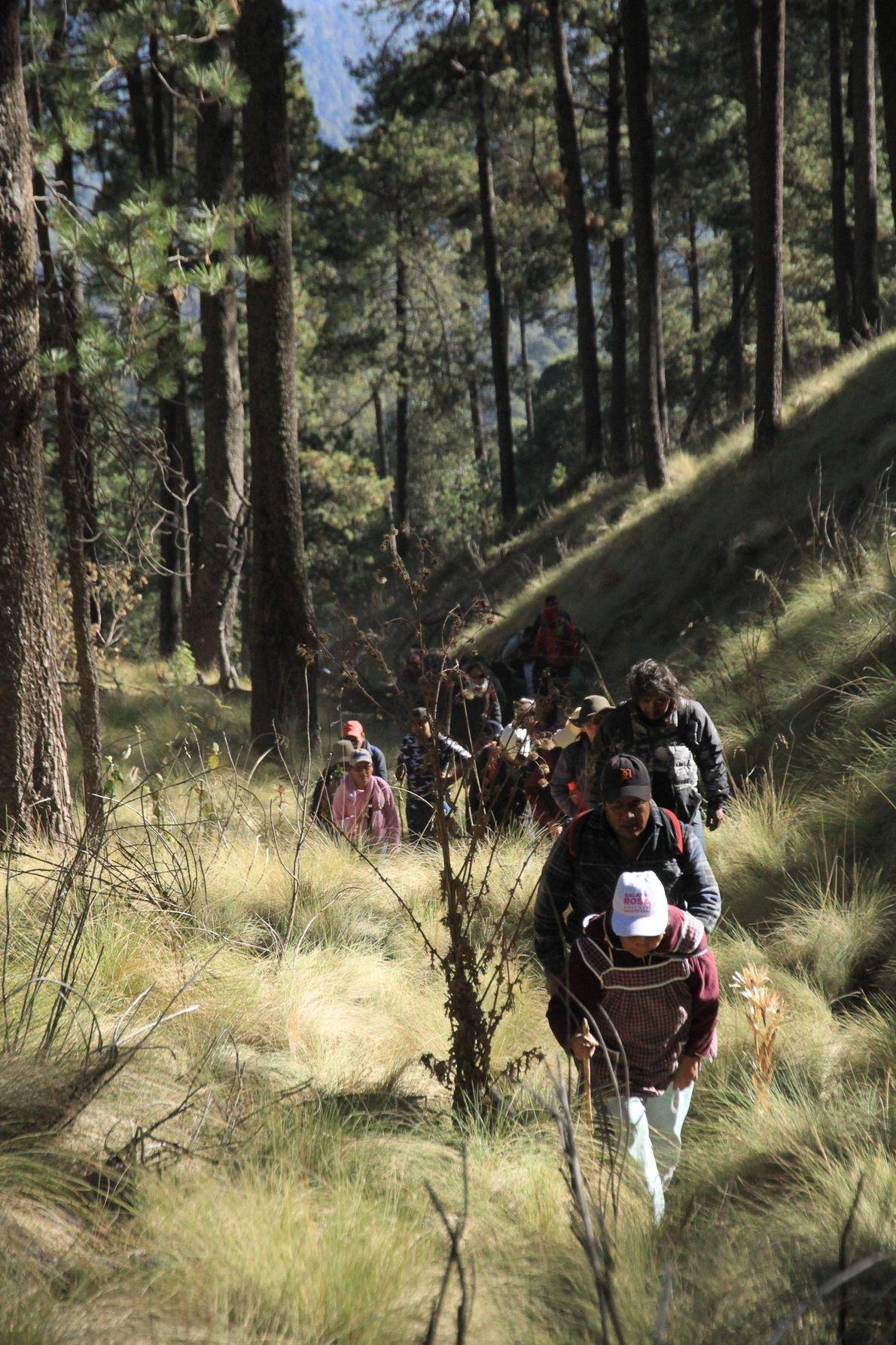 De petits groupes se forment  au début de l'ascension. Le début de la marche s'effectue ...