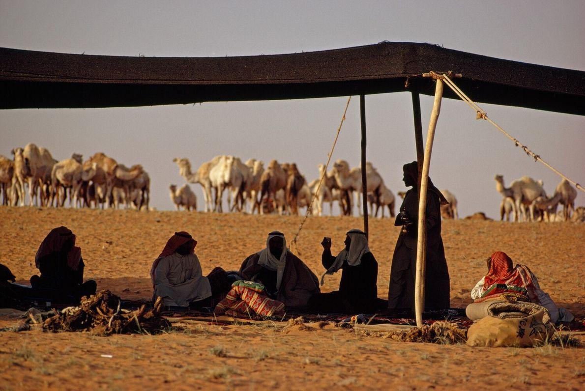 Arabie Saoudite, 1972 : des Bédouins se reposent sous l'ombre d'une tente plantée dans le désert du ...